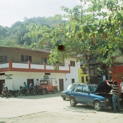 Minca, Sierra Nevada de Santa Marta Mountains.