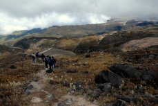 The high alpine landscape of Los Nevados National Park, near Manizales.
