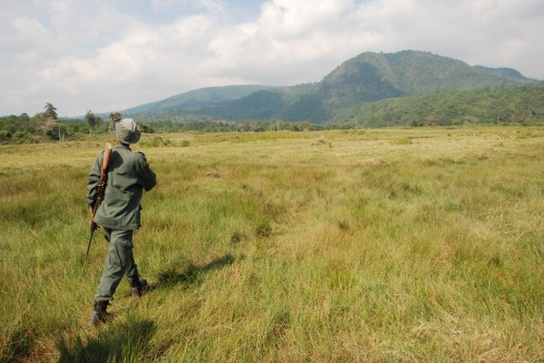 A ranger leads a walking safari in Arusha National Park.