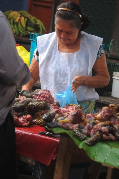 Selling octopus in the Iquitos market.