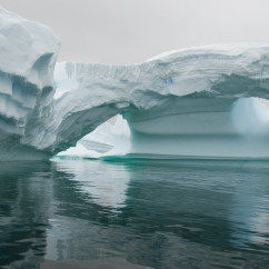Iceberg in Iceberg Alley.