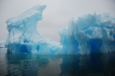 Iceberg in Iceberg Alley.