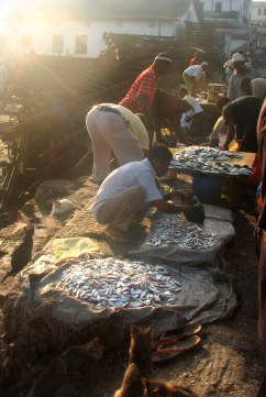 Morning Light on fish market in Stone Town, Zanzibar
