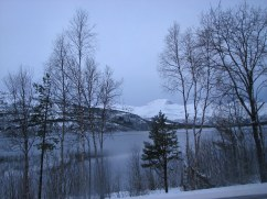 Snowy December landscape in the Arctic, outside Fauske.