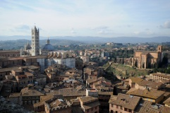 Skyline of Siena