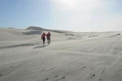 Sand dunes on Farewell Spit.