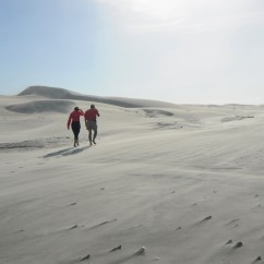 Sand dunes on Farewell Spit.