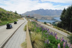 """Thrill seekers on """"luge,"""" Queenstown."""